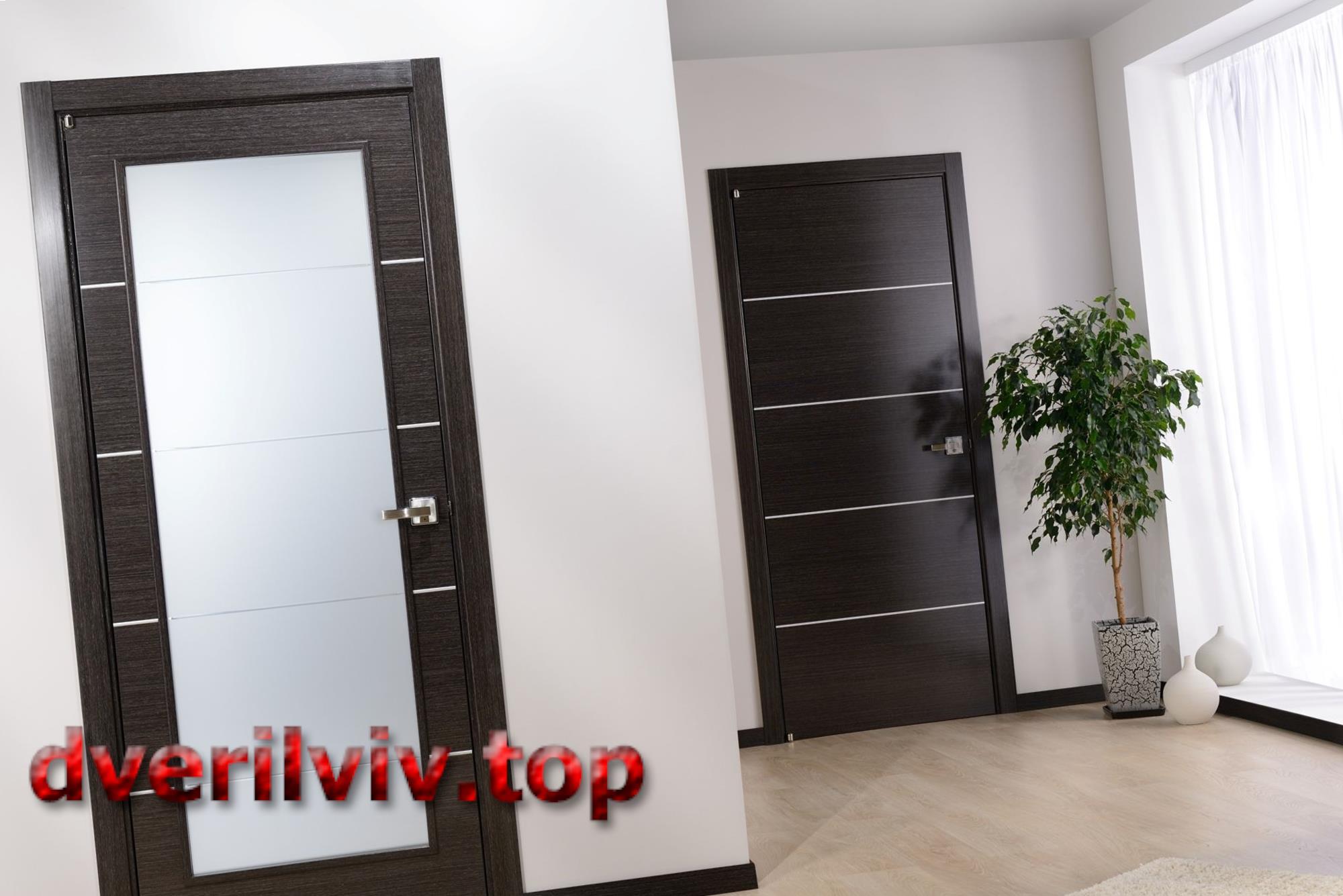 Міжкімнатні двері темного кольору :: Низькі ціни у Львові