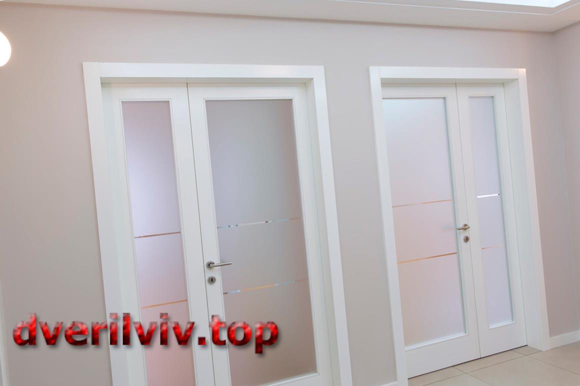 Міжкімнатні пластикові двері у Львові