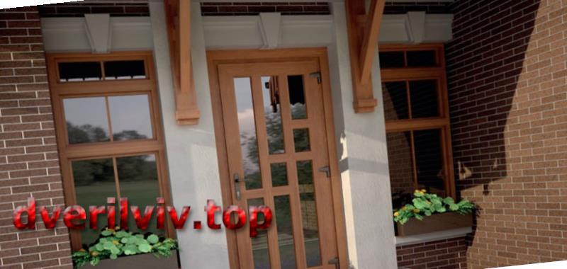 Пластикові двері для приватного будинку